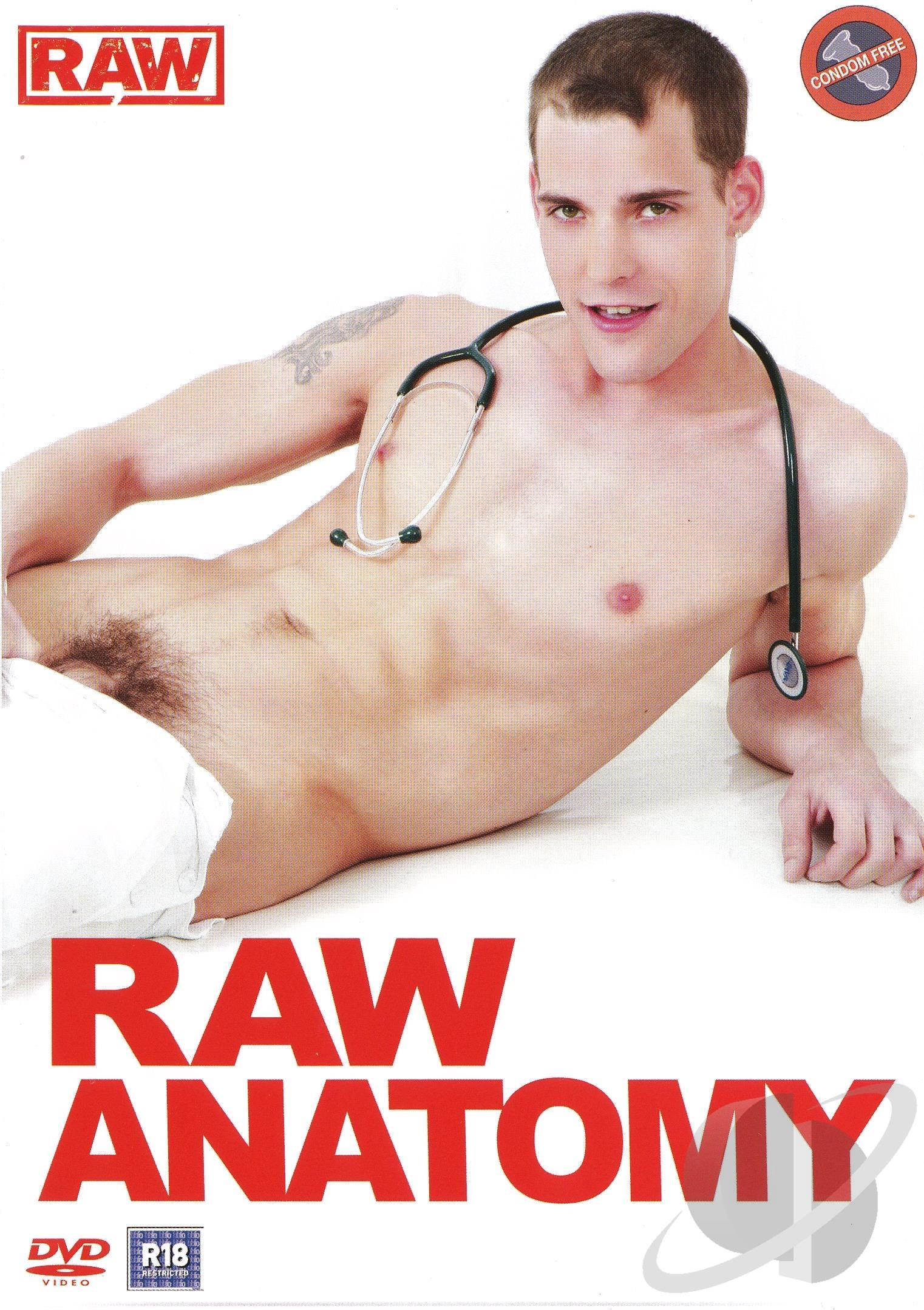 Raw Anatomy