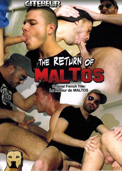 The Return of Maltos