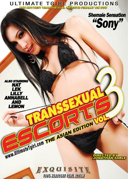 Transsexual Escorts #03