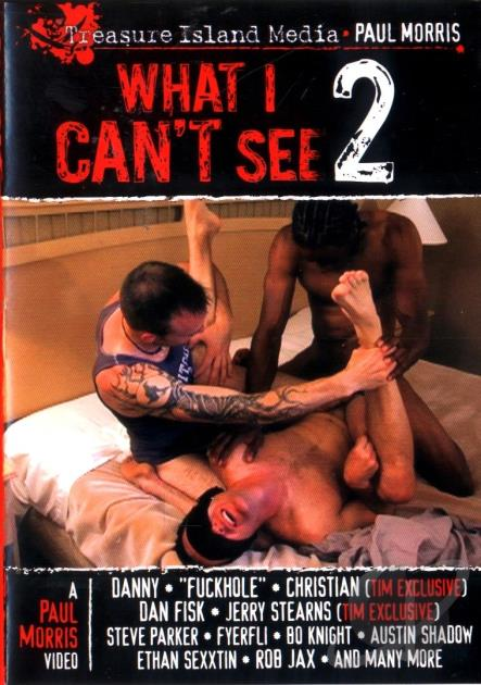 What I Can't See # 2